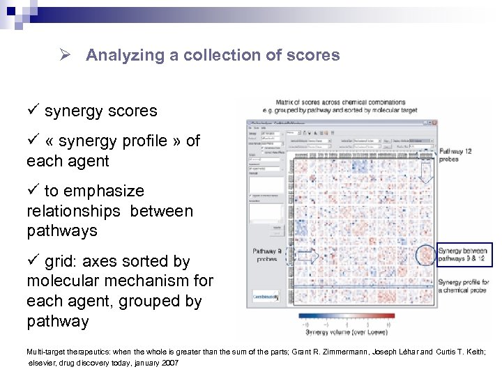 Ø Analyzing a collection of scores ü synergy scores ü « synergy profile »
