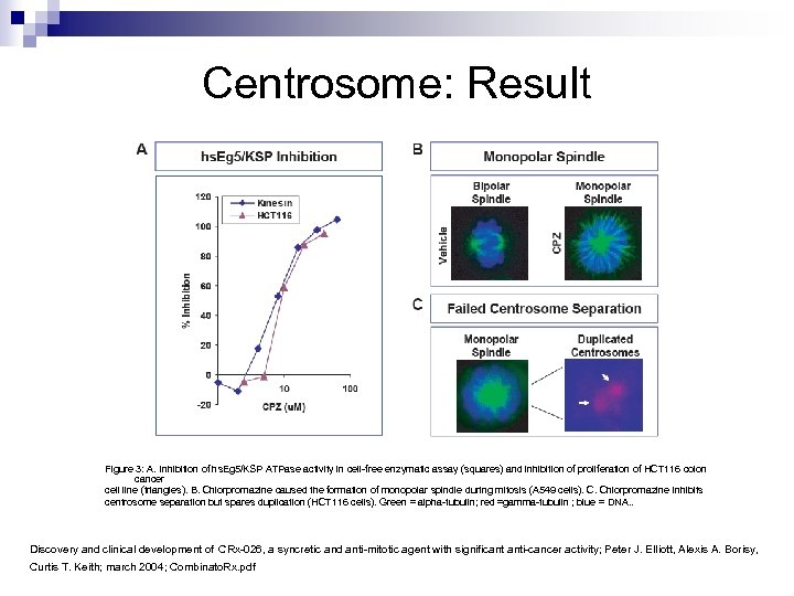 Centrosome: Result Figure 3: A. Inhibition of hs. Eg 5/KSP ATPase activity in cell-free