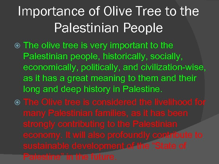 Importance of Olive Tree to the Palestinian People The olive tree is very important