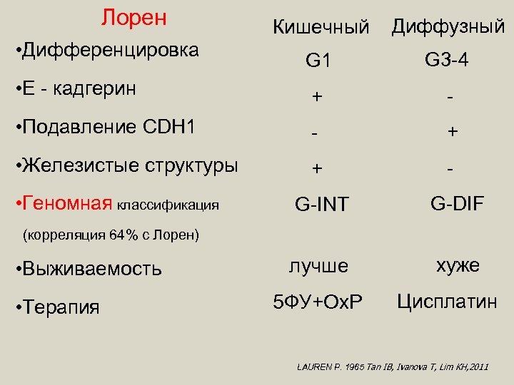 Лорен Кишечный Диффузный G 1 G 3 -4 • Е - кадгерин + -