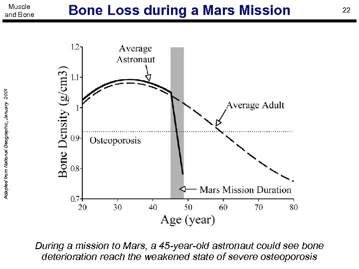 Bone Loss during a Mars Mission Adapted from National Geographic, January 2001 Muscle and