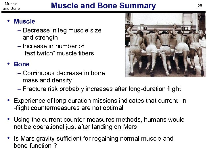 Muscle and Bone Summary • Muscle – Decrease in leg muscle size and strength