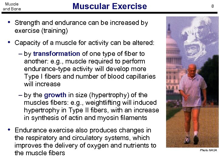 Muscle and Bone Muscular Exercise 8 • Strength and endurance can be increased by