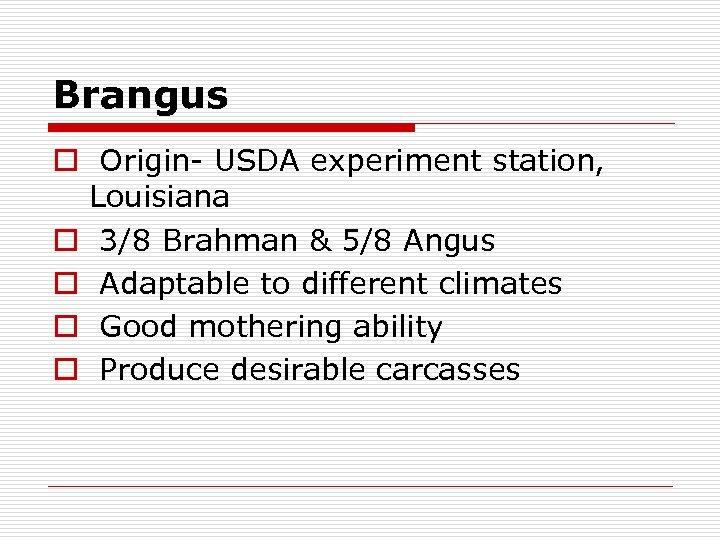 Brangus o Origin- USDA experiment station, Louisiana o 3/8 Brahman & 5/8 Angus o