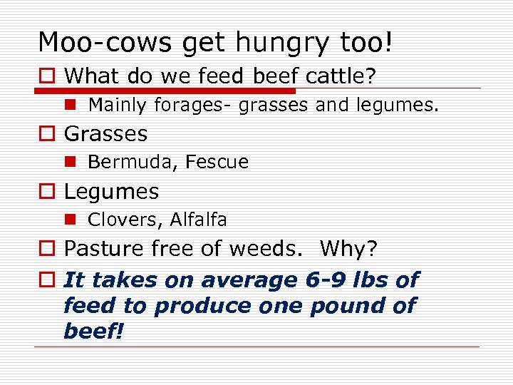 Moo-cows get hungry too! o What do we feed beef cattle? n Mainly forages-