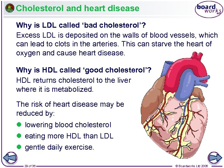 Cholesterol and heart disease Why is LDL called 'bad cholesterol'? Excess LDL is deposited