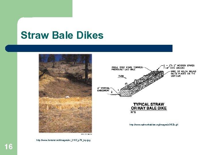 Straw Bale Dikes http: //www. salmonhabitat. org/images/v 3 f 52 b. gif http: //www.