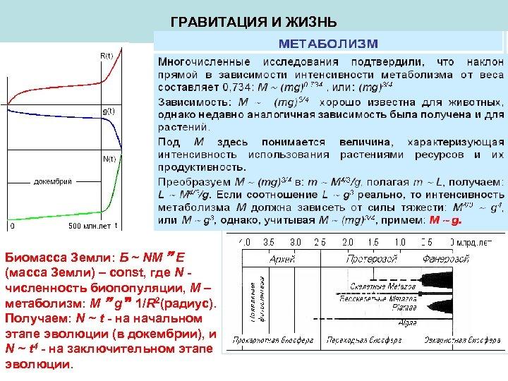 ГРАВИТАЦИЯ И ЖИЗНЬ Биомасса Земли: Б ~ NM E (масса Земли) – const, где