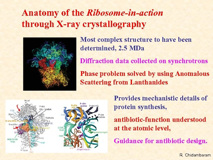 Anatomy of the Ribosome-in-action through X-ray crystallography Most complex structure to have been determined,