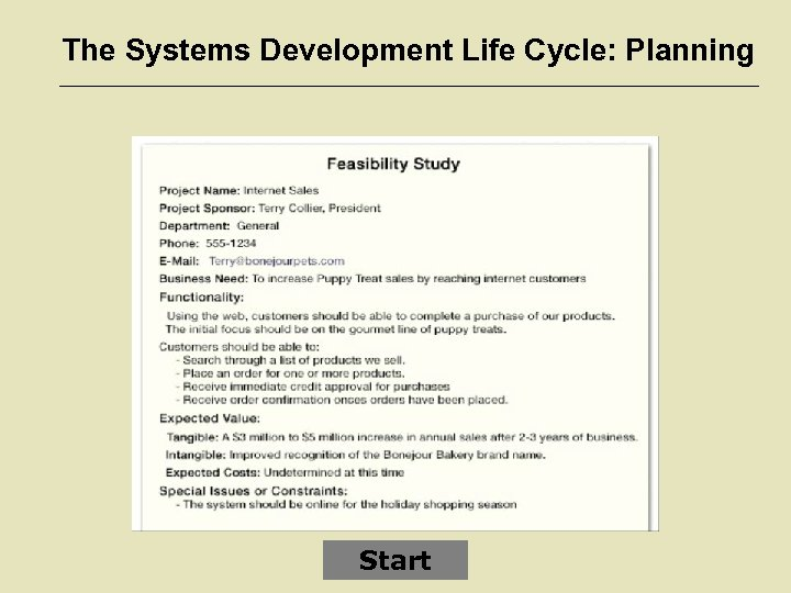 The Systems Development Life Cycle: Planning Start