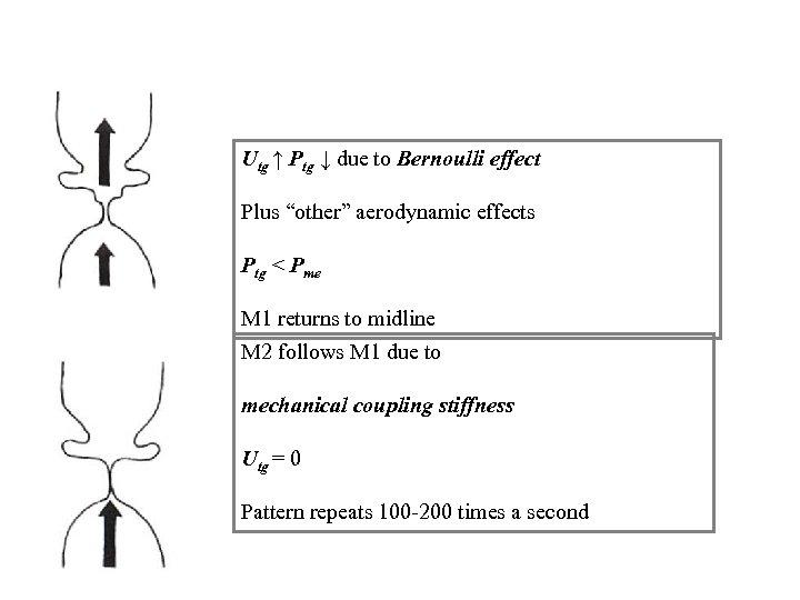 "Utg ↑ Ptg ↓ due to Bernoulli effect Plus ""other"" aerodynamic effects Ptg <"