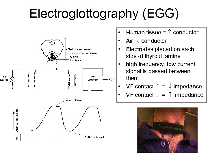 Electroglottography (EGG) • Human tissue = conductor • Air: conductor • Electrodes placed on