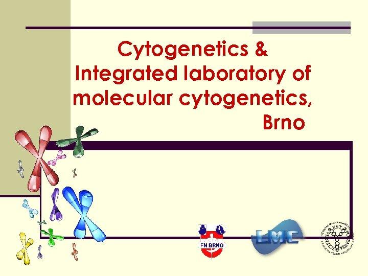 Cytogenetics & Integrated laboratory of molecular cytogenetics, Brno
