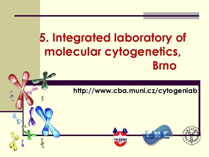 5. Integrated laboratory of molecular cytogenetics, Brno http: //www. cba. muni. cz/cytogenlab