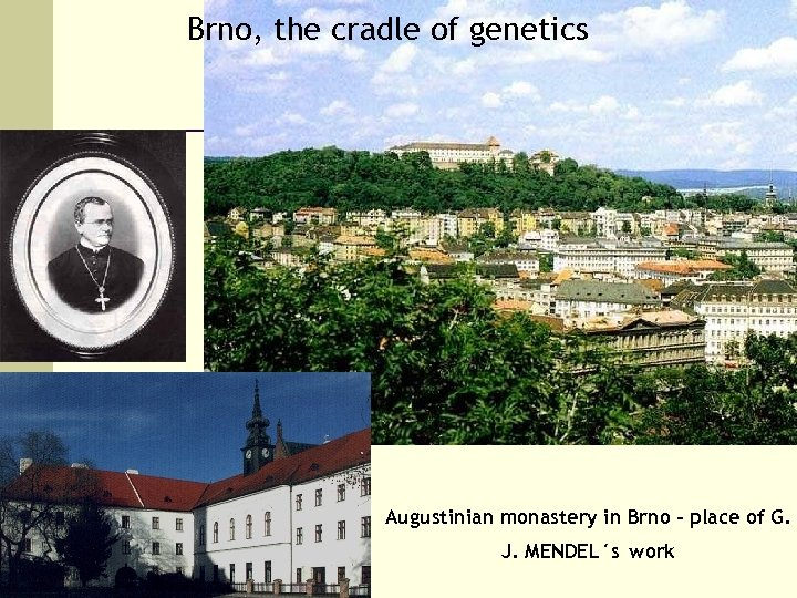 Brno, the cradle of genetics Augustinian monastery in Brno – place of G. J.