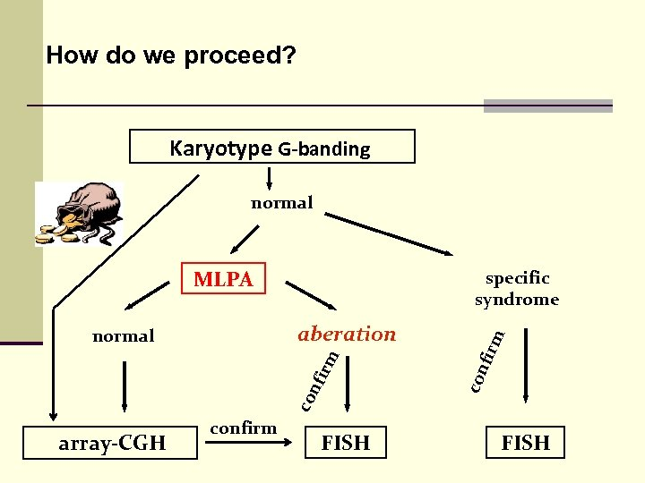 How do we proceed? Karyotype G-banding normal MLPA rm nfi co con aberation normal