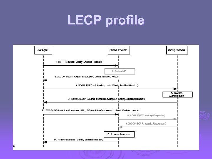 LECP profile