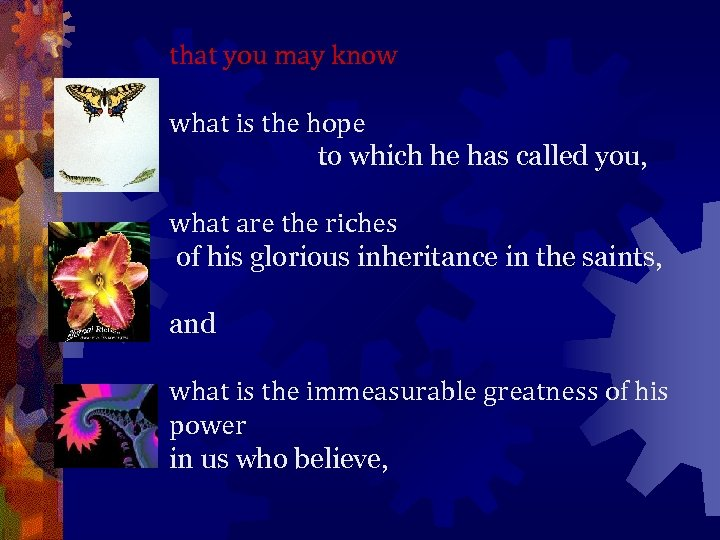 that you may know what is the hope to which he has called you,