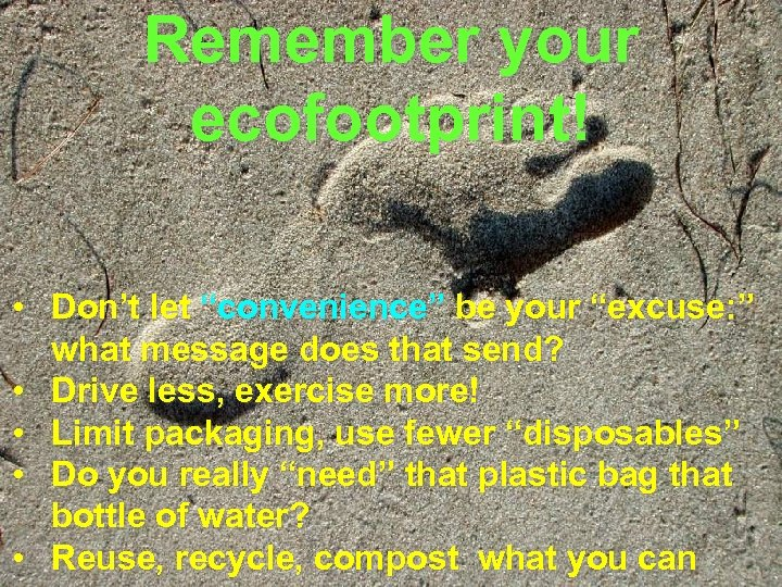 """Remember your ecofootprint! • Don't let """"convenience"""" be your """"excuse: """" what message does"""