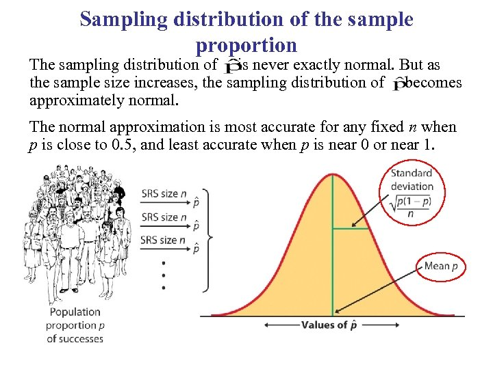 Sampling distribution of the sample proportion The sampling distribution of is never exactly normal.