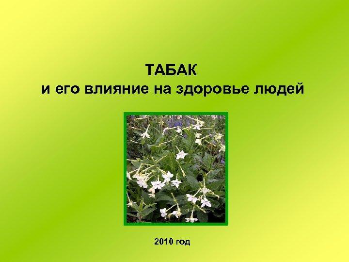 ТАБАК и его влияние на здоровье людей 2010 год