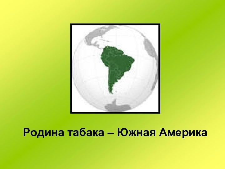 Родина табака – Южная Америка