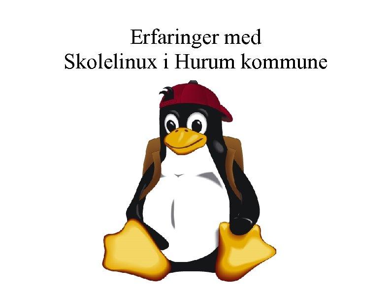 Erfaringer med Skolelinux i Hurum kommune