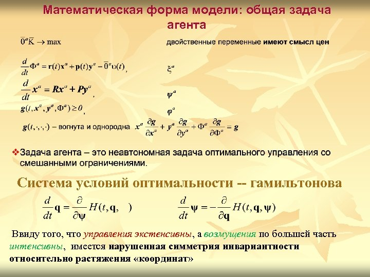 Математическая форма модели: общая задача агента Система условий оптимальности -- гамильтонова Ввиду того, что