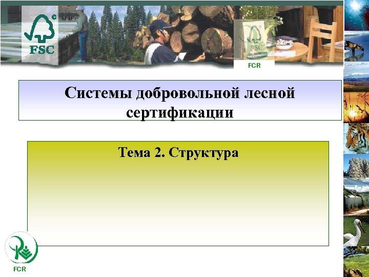 FCR Системы добровольной лесной сертификации Тема 2. Структура FCR