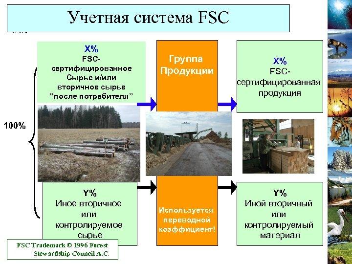 """Учетная система FSC X% FSCсертифицированное Сырье и/или вторичное сырье """"после потребителя"""" Группа Продукции X%"""