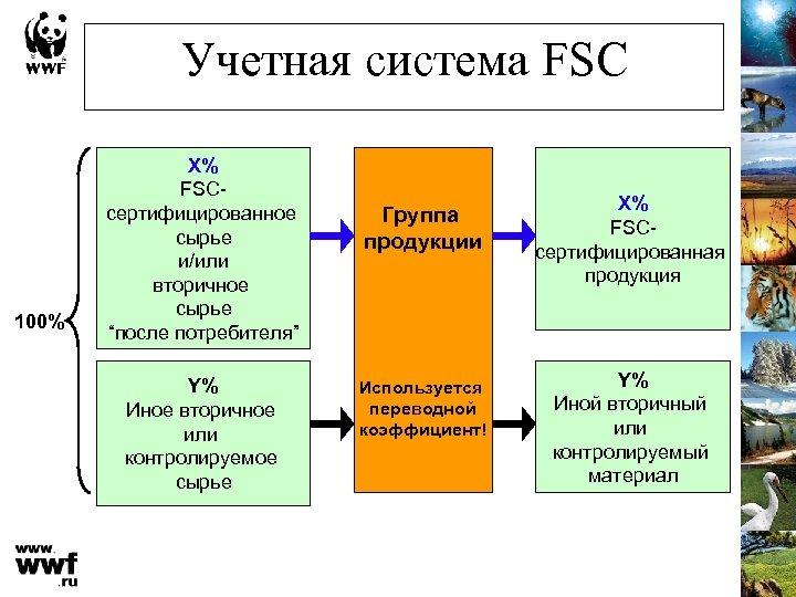 """Учетная система FSC 100% X% FSCсертифицированное сырье и/или вторичное сырье """"после потребителя"""" Y% Иное"""