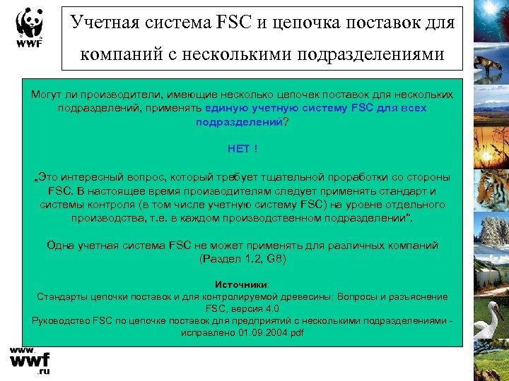 Учетная система FSC и цепочка поставок для компаний с несколькими подразделениями Могут ли производители,