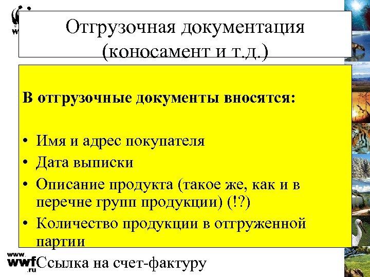 Отгрузочная документация (коносамент и т. д. ) В отгрузочные документы вносятся: • Имя и