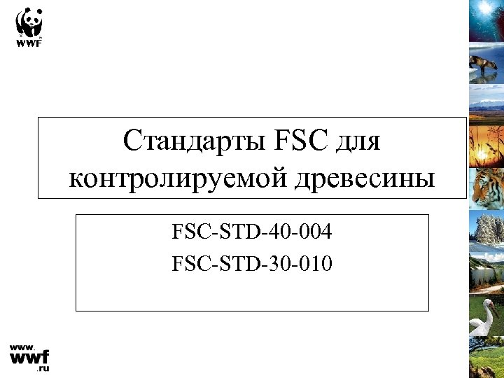 Стандарты FSC для контролируемой древесины FSC-STD-40 -004 FSC-STD-30 -010