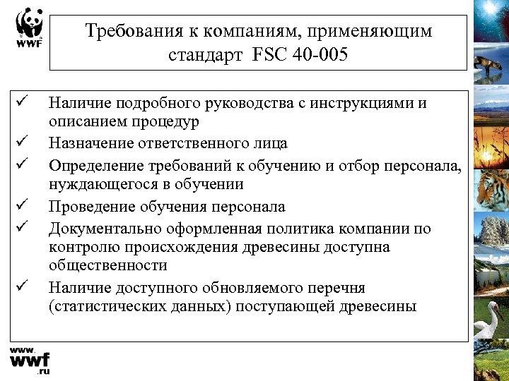 Требования к компаниям, применяющим стандарт FSC 40 -005 ü ü ü Наличие подробного руководства