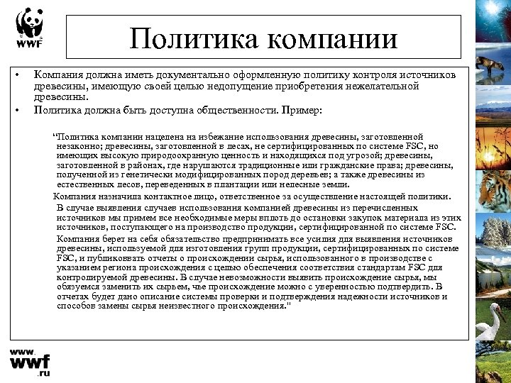Политика компании • • Компания должна иметь документально оформленную политику контроля источников древесины, имеющую