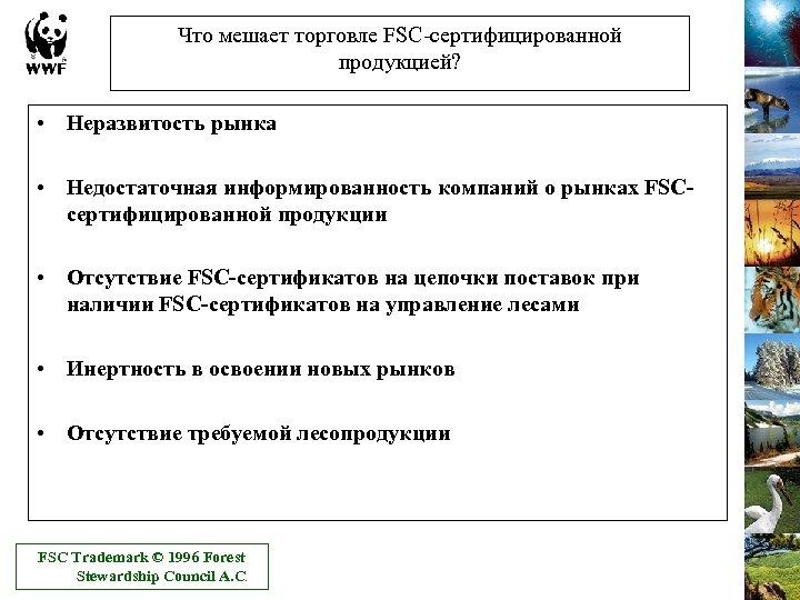 Что мешает торговле FSC-сертифицированной продукцией? • Неразвитость рынка • Недостаточная информированность компаний о рынках