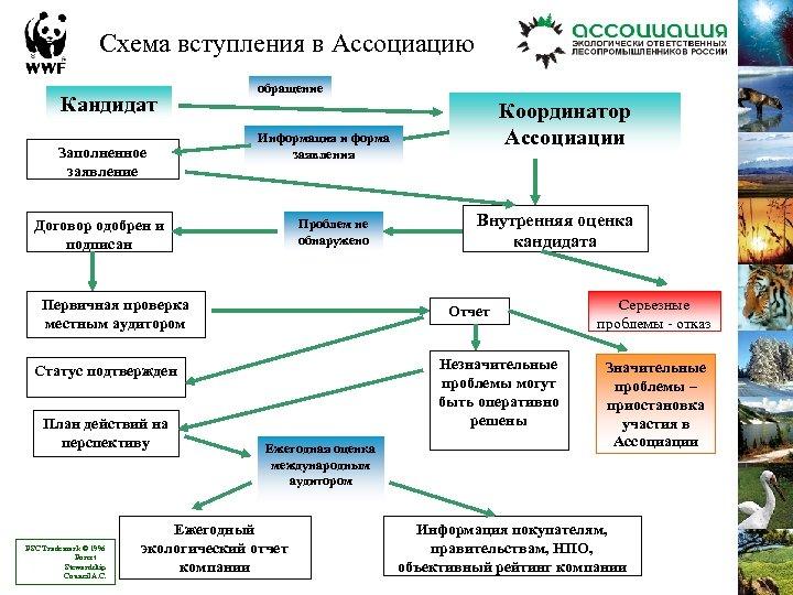 Схема вступления в Ассоциацию Кандидат Заполненное заявление обращение Информация и форма заявления Проблем не