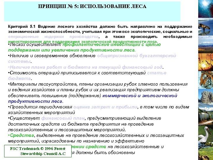 ПРИНЦИП № 5: ИСПОЛЬЗОВАНИЕ ЛЕСА Критерий 5. 1 Ведение лесного хозяйства должно быть направлено