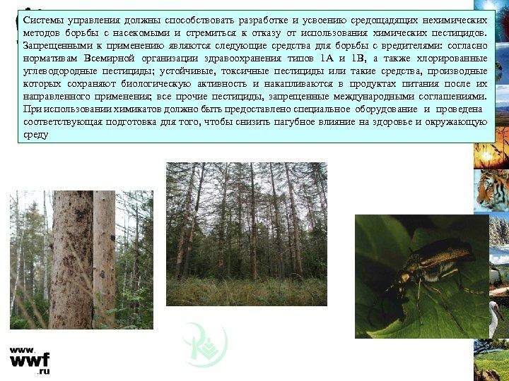 Системы управления должны способствовать разработке и усвоению средощадящих нехимических методов борьбы с насекомыми и