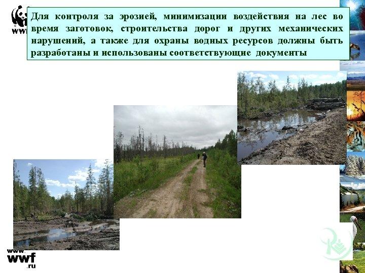 Для контроля за эрозией, минимизации воздействия на лес во время заготовок, строительства дорог и