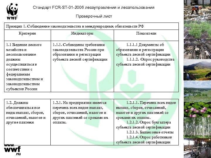 Стандарт FCR-ST-01 -2006 лесоуправления и лесопользования Проверочный лист Принцип 1. Соблюдение законодательства и международных