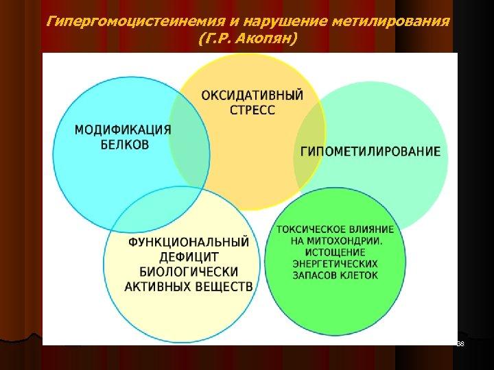 Гипергомоцистеинемия и нарушение метилирования (Г. Р. Акопян) 38