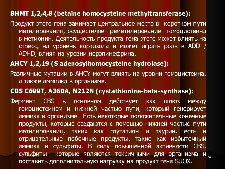 BHMT 1, 2, 4, 8 (betaine homocysteine methyltransferase): Продукт этого гена занимает центральное место
