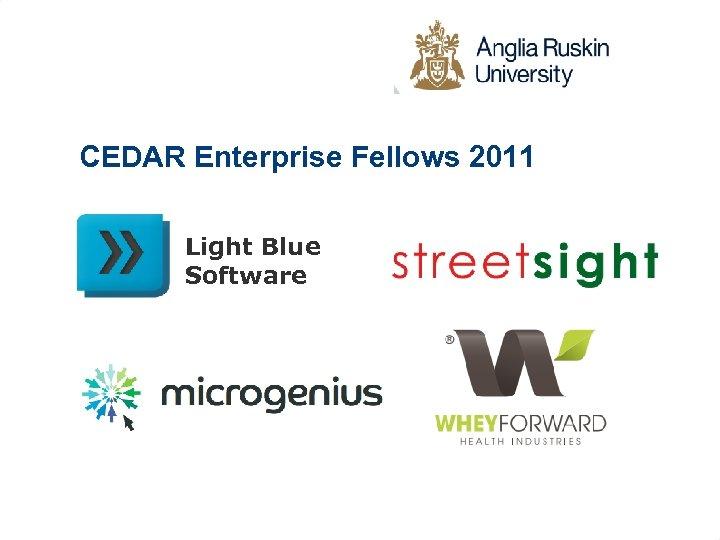 CEDAR Enterprise Fellows 2011 Light Blue Software