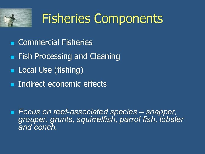 Fisheries Components n Commercial Fisheries n Fish Processing and Cleaning n Local Use (fishing)