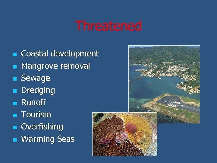 Threatened n n n n Coastal development Mangrove removal Sewage Dredging Runoff Tourism Overfishing