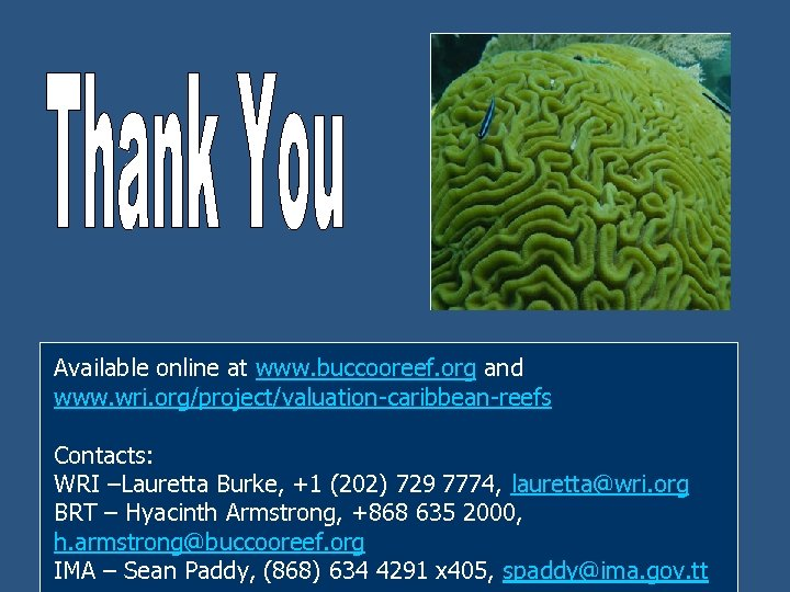 Available online at www. buccooreef. org and www. wri. org/project/valuation-caribbean-reefs Contacts: WRI –Lauretta Burke,