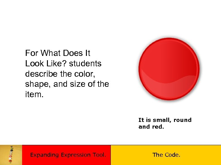 For What Does It Look Like? students describe the color, shape, and size of