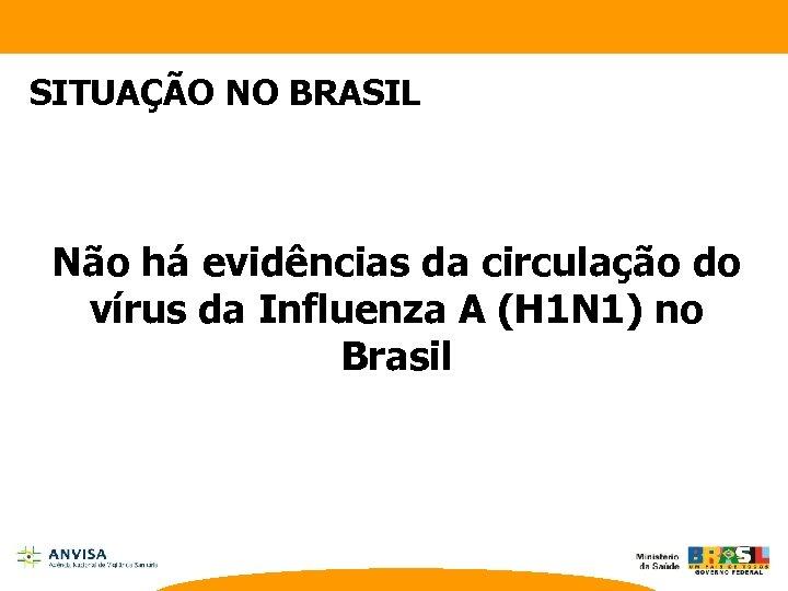 SITUAÇÃO NO BRASIL Não há evidências da circulação do vírus da Influenza A (H